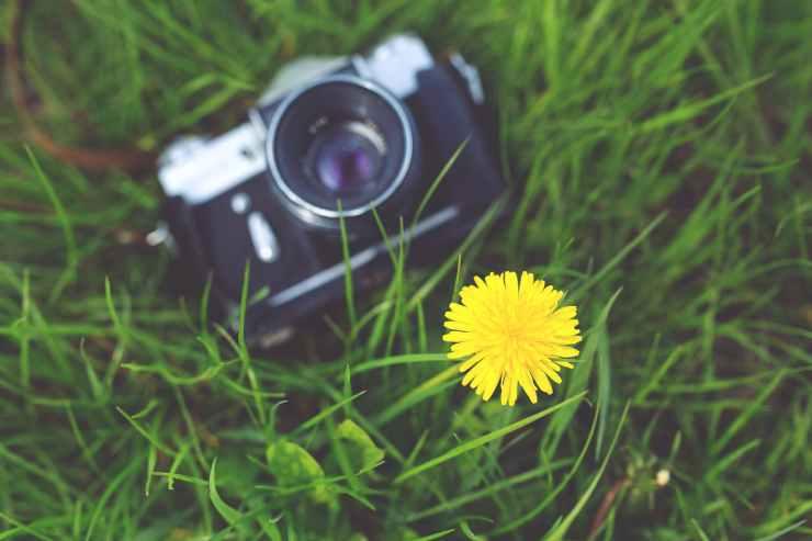 camera-photographer-yellow-photography.jpg