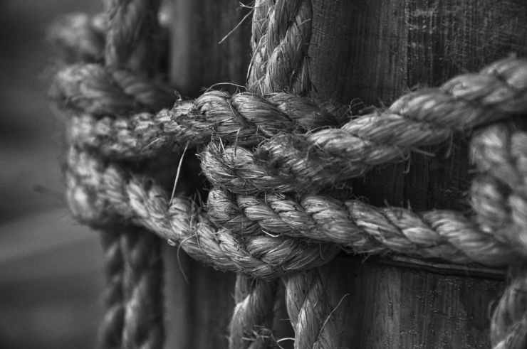 grayscale photo of rope on log